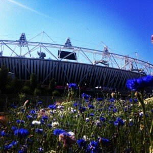 Olympic Park: Our Top Five Tips 1