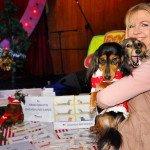 Doggie Christmas Pics - Thanks to BOWOWOW! 37