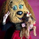 Doggie Christmas Pics - Thanks to BOWOWOW! 23