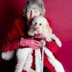 Doggie Christmas Pics - Thanks to BOWOWOW! 27
