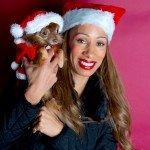 Doggie Christmas Pics - Thanks to BOWOWOW! 2