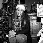 Doggie Christmas Pics - Thanks to BOWOWOW! 35
