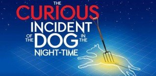 The Curious Incident of Marcus at the Theatre on Wednesday
