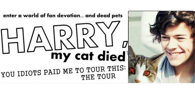 Harry, My Cat Died