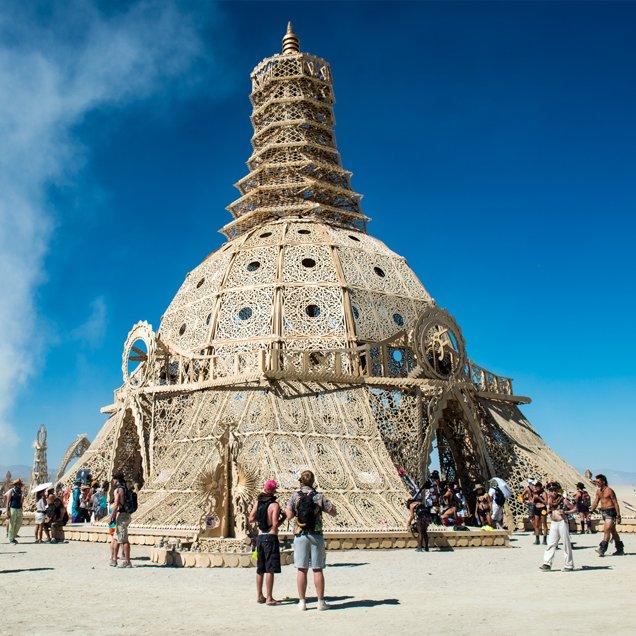Artichoke - 'Temple'