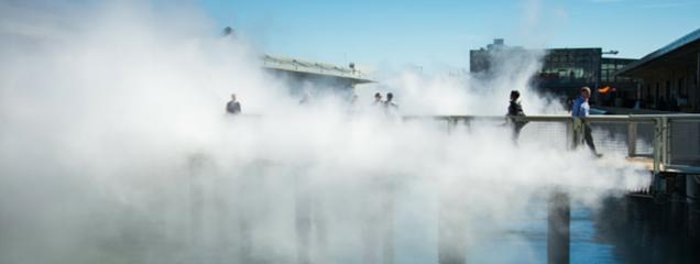 fog bridge