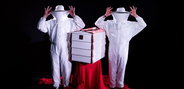 BEES! The Colony | Brighton Festival 2015