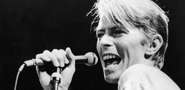 Bowie Memorial Night