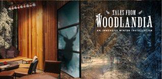 tales from woodlandia
