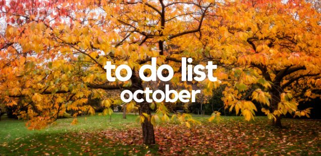 Unmissable Things To Do in London – October 2017