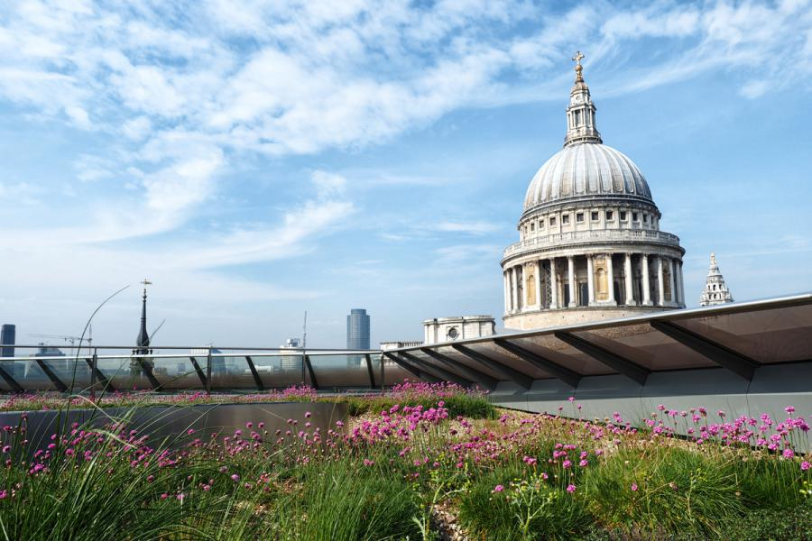 Free London Views 2